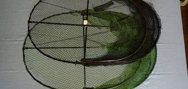 Eel trap