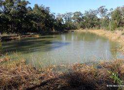 Old ponds