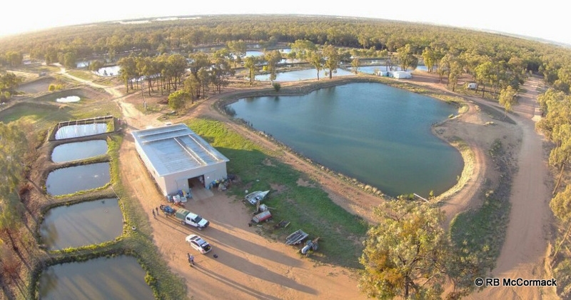 Narrabri Fish Farm
